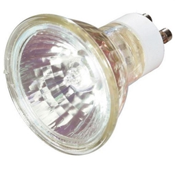 Halogen MR16 50 watt